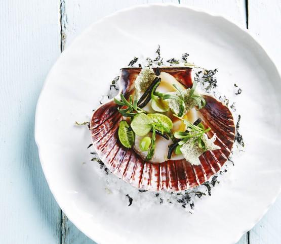 gerecht St-Jacobsvruchten, dish scallops
